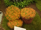 floraart