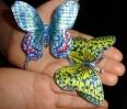 limeni leptirići