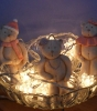 Svjetleći medvjedići